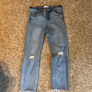 Loft crop straight leg jean